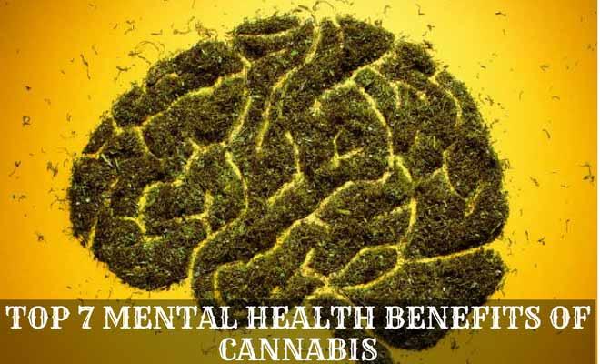 Top 7 Mental Health Benefits of Cannabis (Marijuana)