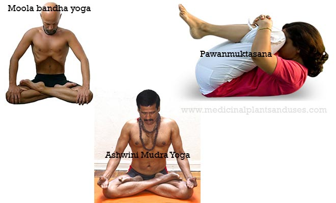 Best yoga poses to cure piles