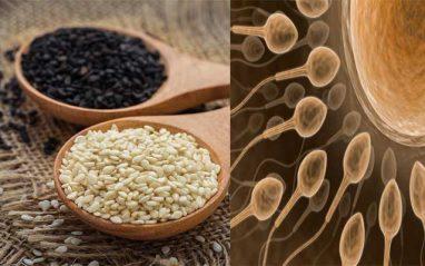 How do sesame seeds improve sperm quality
