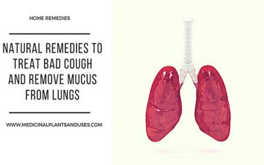 Natural remedies to treat bad cough and remove mucus from lungs