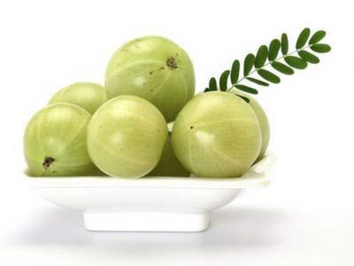 Amla antidiabetic plant