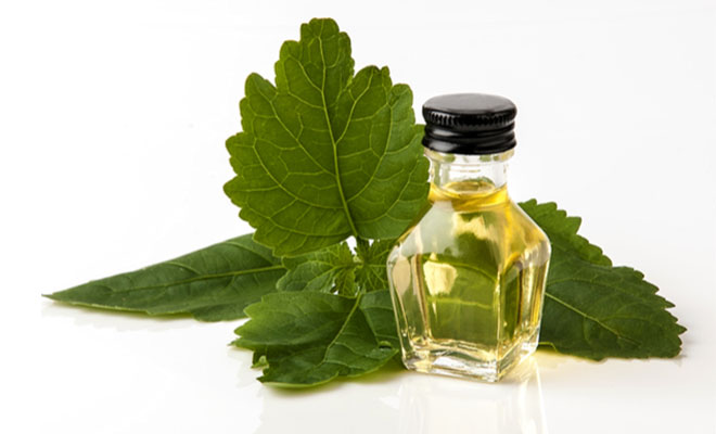 patchouli oil for dry skin